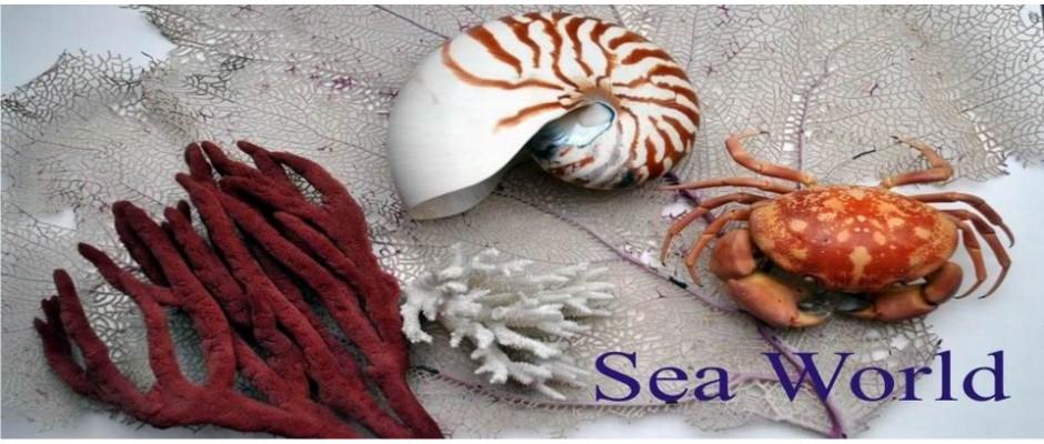 sea word