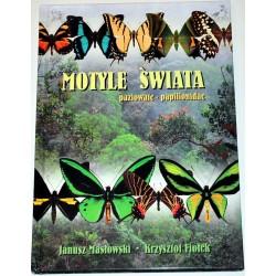 Каталог бабочек Бабочки Мира