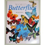 World Butterflies  Bernard d Abrera